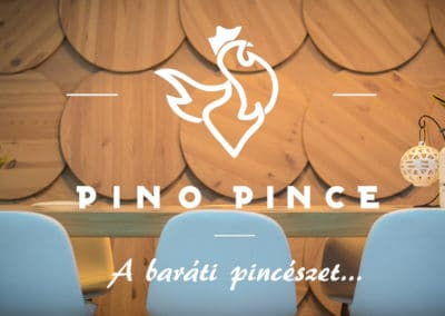 Pino pince ajanlo-cover